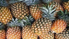 Pine Apple 1pc